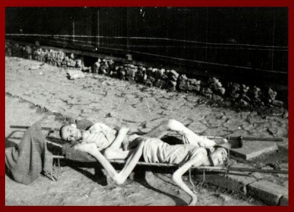 [Image: holocaust8.jpg]