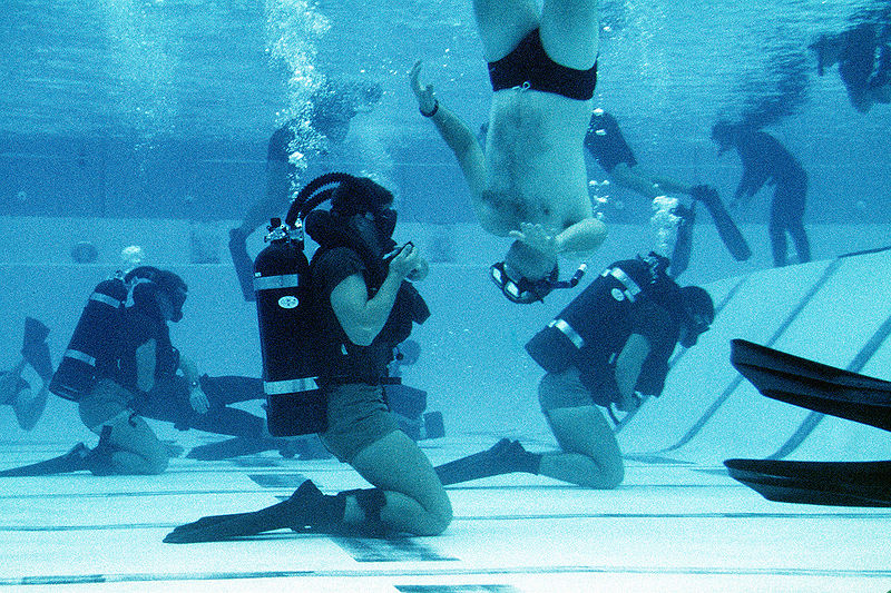 The U S Navy Seals Their Missions