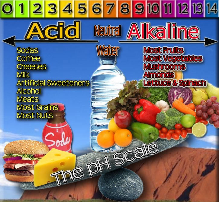 acid promoting foods