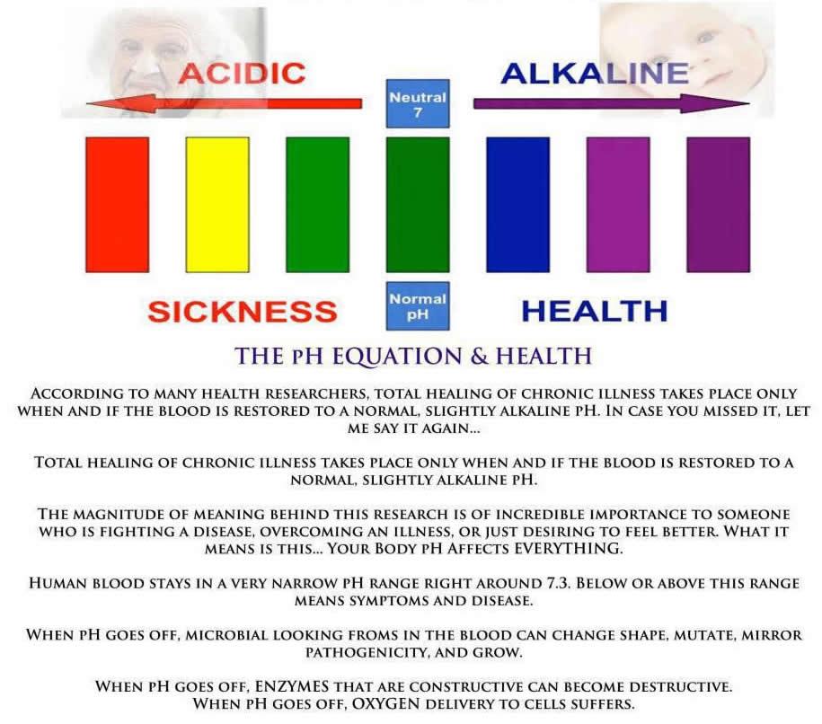 Dieterata.Com   Alkaline And Acid Food Combining Chart